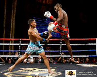 Lion Fight Promotions 17 @ Foxwoods Casino August 1, 2014